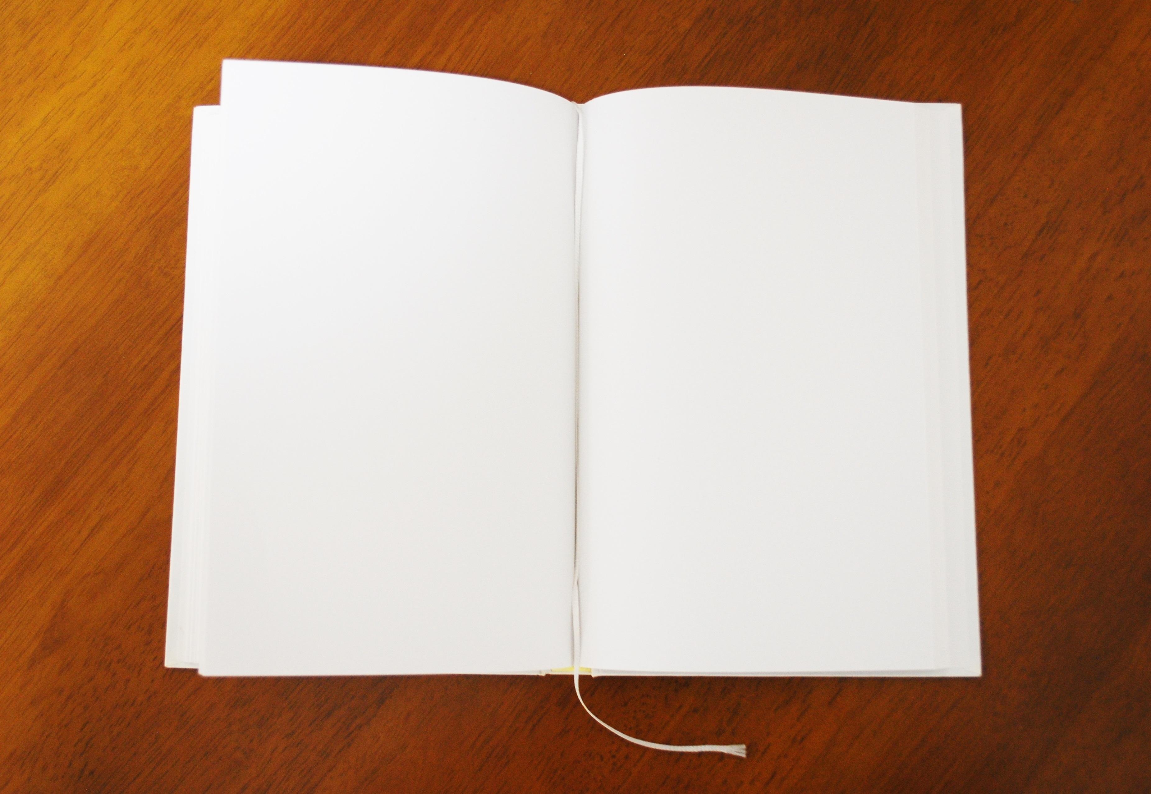 開業者本人が物件探しからオープンまでのリアルな日々を綴る日記。『開業ブログ』続々始動!
