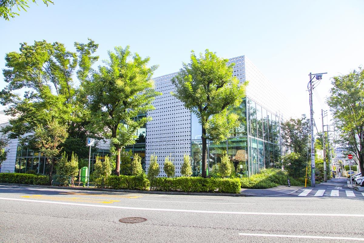 代官山(渋谷区)で居抜きで飲食店を開業するための街情報