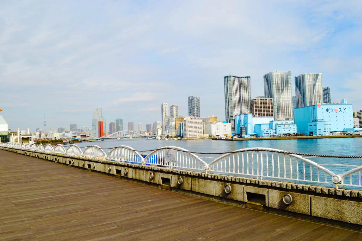 桟橋から見る眺望