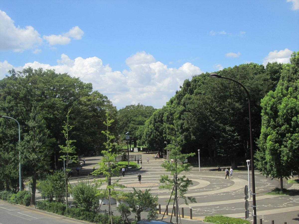 代々木公園(渋谷区)で居抜きで飲食店を開業するための街情報