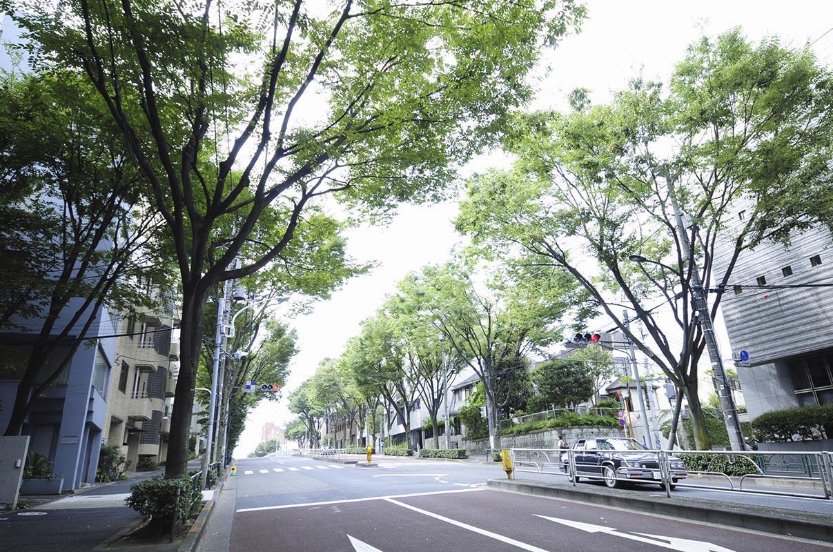 代々木上原(渋谷区)で居抜きで飲食店を開業するための街情報